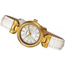 Reloj Casio LTP1353-GL